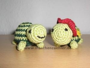 zwei Schildkröten Nr. 3