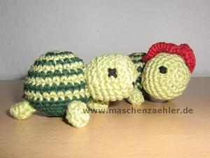 zwei Schildkröten Nr. 2