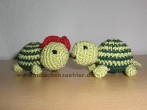zwei Schildkröten Nr. 1